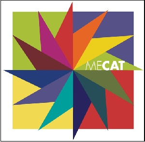 Monitoring and Evaluation Capacity Assessment Toolkit (MECAT)